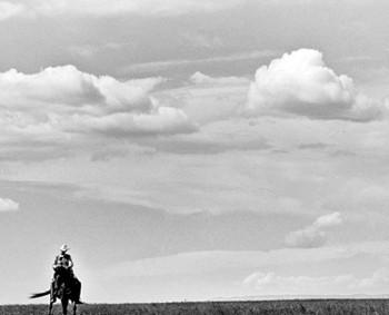 Cowboy13
