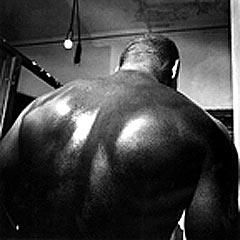 boxing_ltd